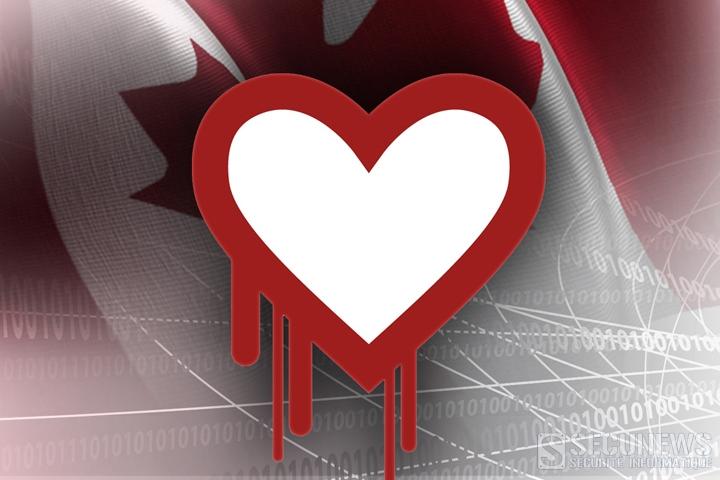 Un jeune canadien de 19 ans en lien avec la faille informatique Heartbleed, arrêté